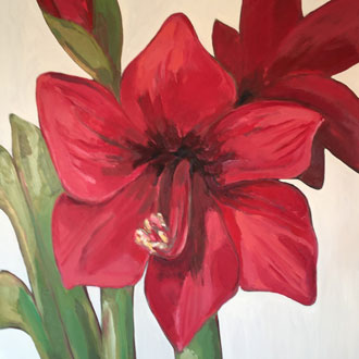Red Amaryllis II