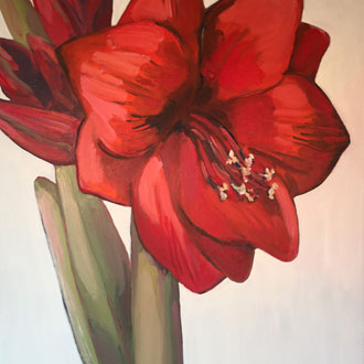 Red Amaryllis III