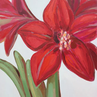 Red Amaryllis IV
